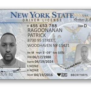 New York State Driver License